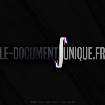 Logotype le document unique