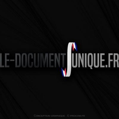 Logotype le document unique