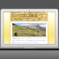 Visuel site web 20