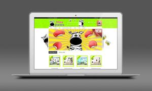 Visuel site web 4