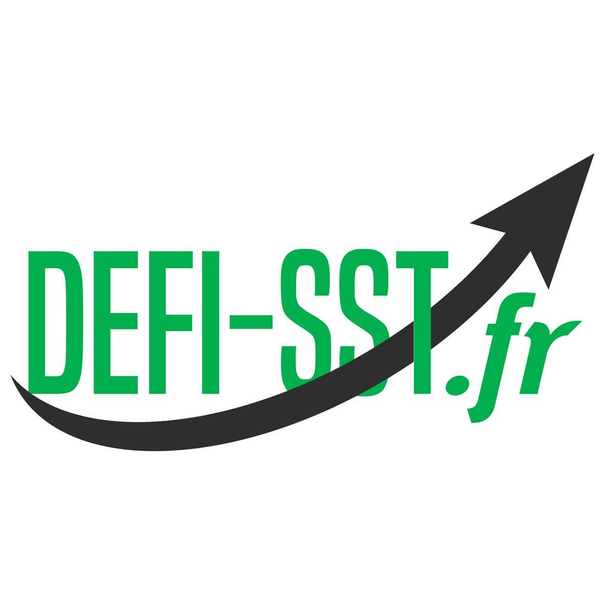 Defi sst logotype 003
